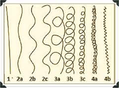 curl-pattern-chart